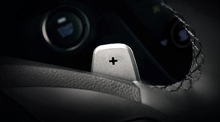 Hyundai Ioniq Pavarų perjungimo mentelės