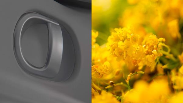 Naujasis Hyundai IONIQ 5 tvarumas gėlės